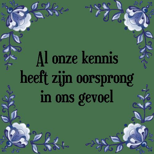 spreuken over kennis Kennis   Tegel + Spreuk | TegelSpreuken.nl spreuken over kennis