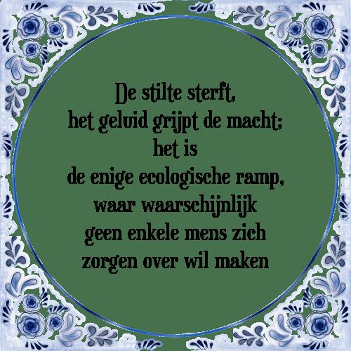 stilte spreuken Stilte sterft   Tegel + Spreuk | TegelSpreuken.nl stilte spreuken