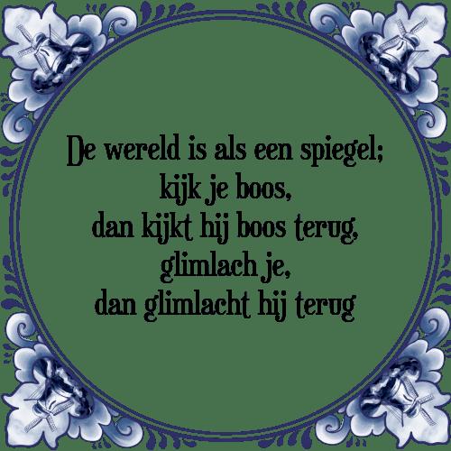 spiegel spreuken Wereld spiegel   Tegel + Spreuk | TegelSpreuken.nl spiegel spreuken