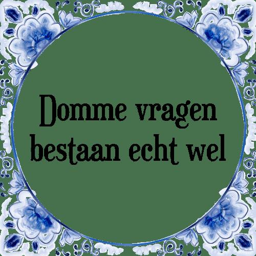 domme spreuken Domme vragen   Tegel + Spreuk | TegelSpreuken.nl domme spreuken