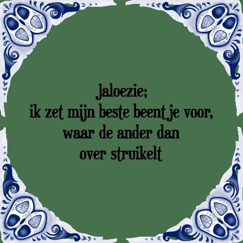 spreuken over jaloezie Jaloezie voor   Tegel + Spreuk | TegelSpreuken.nl spreuken over jaloezie