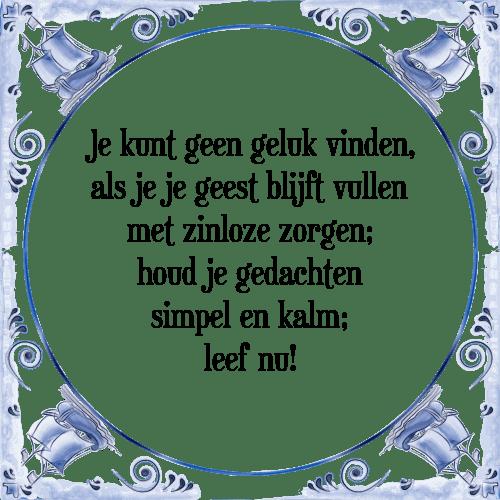 zinloze spreuken Geen geluk   Tegel + Spreuk   TegelSpreuken.nl zinloze spreuken