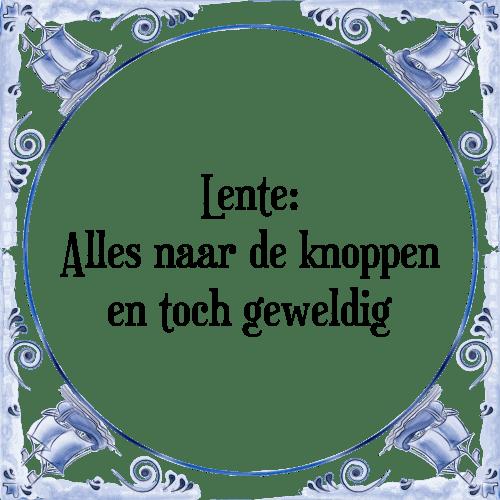lente spreuken en gezegden Lente   Tegel + Spreuk   TegelSpreuken.nl lente spreuken en gezegden