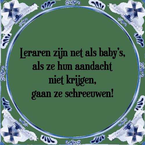 Leraren Als Babys Tegel Spreuk Tegelspreuken Nl