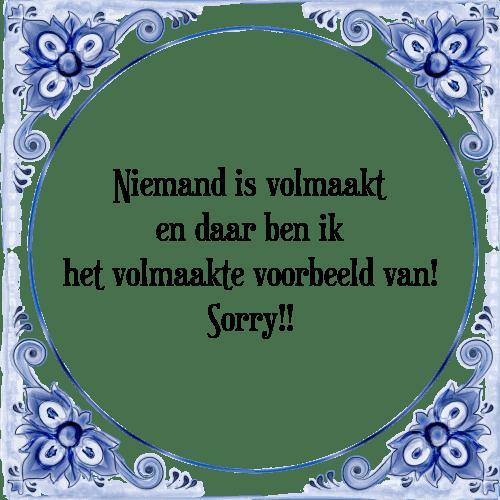 sorry spreuken Is volmaakt   Tegel + Spreuk | TegelSpreuken.nl sorry spreuken