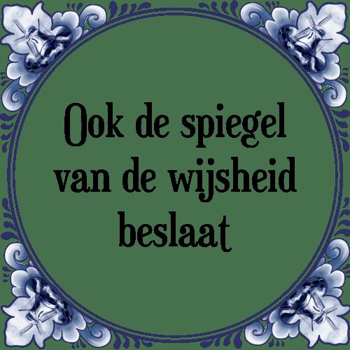 spiegel spreuken De spiegel   Tegel + Spreuk | TegelSpreuken.nl spiegel spreuken
