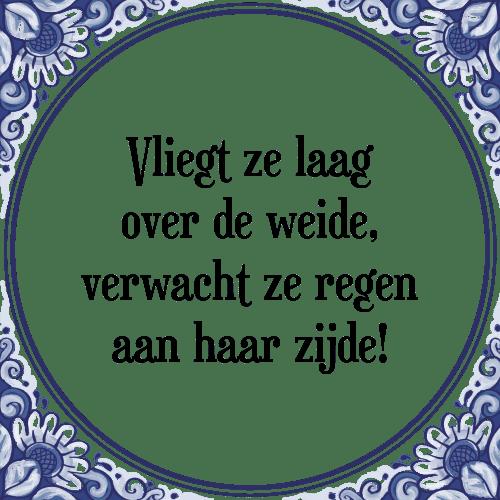 spreuken over regen Vliegt   Tegel + Spreuk | TegelSpreuken.nl spreuken over regen