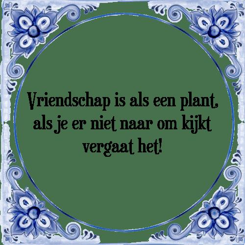 tegeltjes spreuken vriendschap Vriendschap is   Tegel + Spreuk | TegelSpreuken.nl tegeltjes spreuken vriendschap