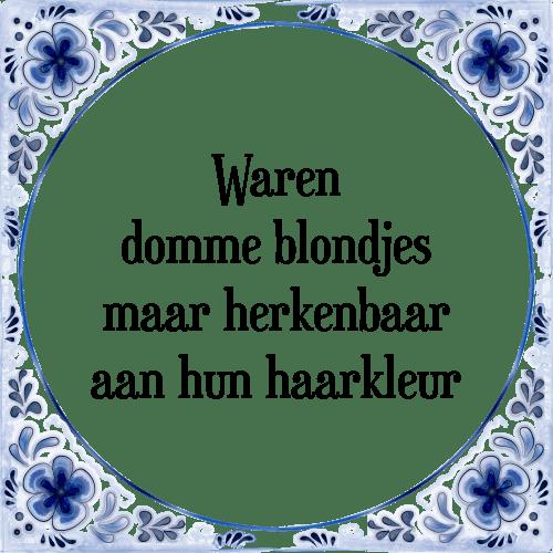 domme spreuken Domme blondjes   Tegel + Spreuk | TegelSpreuken.nl domme spreuken