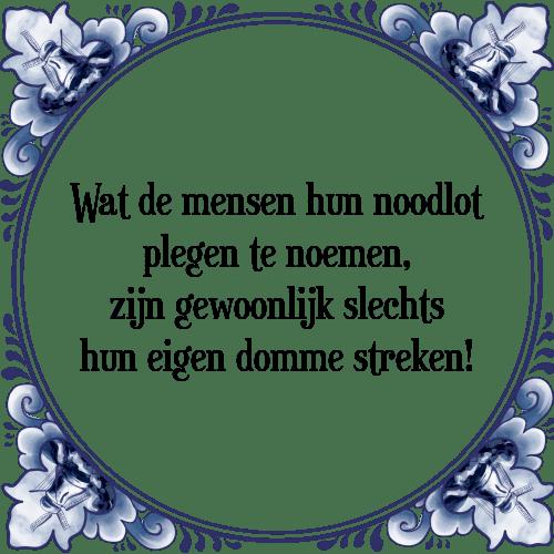 spreuken over domme mensen Wat mensen   Tegel + Spreuk | TegelSpreuken.nl spreuken over domme mensen